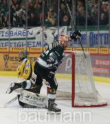 Eishockey DEL 2 Bietigheim Steelers vs. Bayreuth Tigers