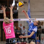 Volleyball Allianz MTV Stuttgart vs.  VC Wiesbaden