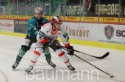 Eishockey SC Steelers Bietigheim vs. Rote Teufel Bad Nauheim