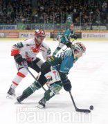 Eishockey Steelers Bietigheim vs. EC Bad Nauheim