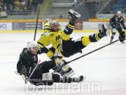 Eishockey DEL 2 Bietigheim Steelers vs. EHC Bayreuth Tigers